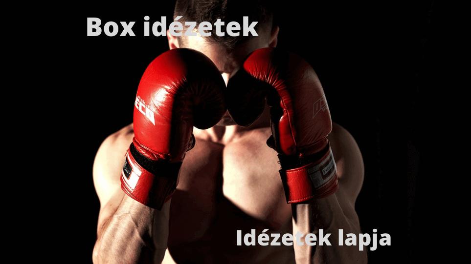 Box idézetek