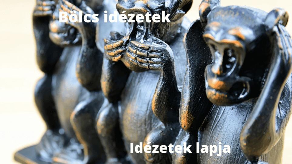 Bölcs dézetek